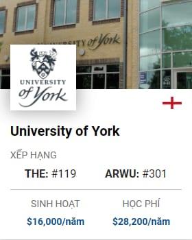 University Of York 2