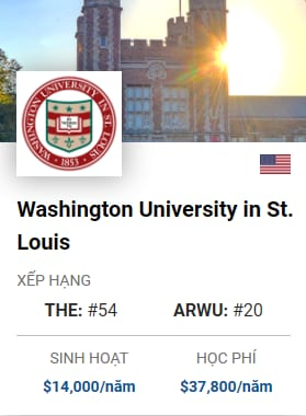 Washington University in StLouis