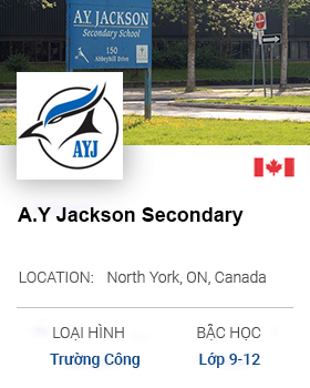 A.Y secondary