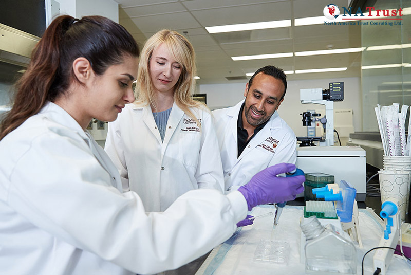 Du Học McMaster University – Đại Học Top 4 Canada