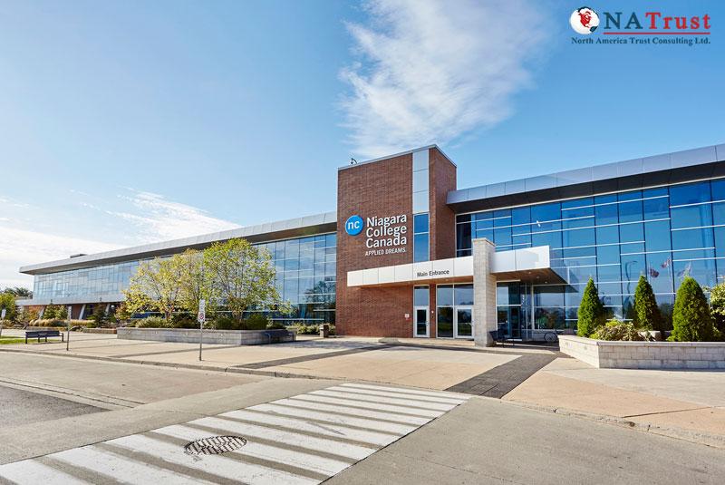 Du Học Niagara College – cao đẳng chi phí hợp lý tại Canada