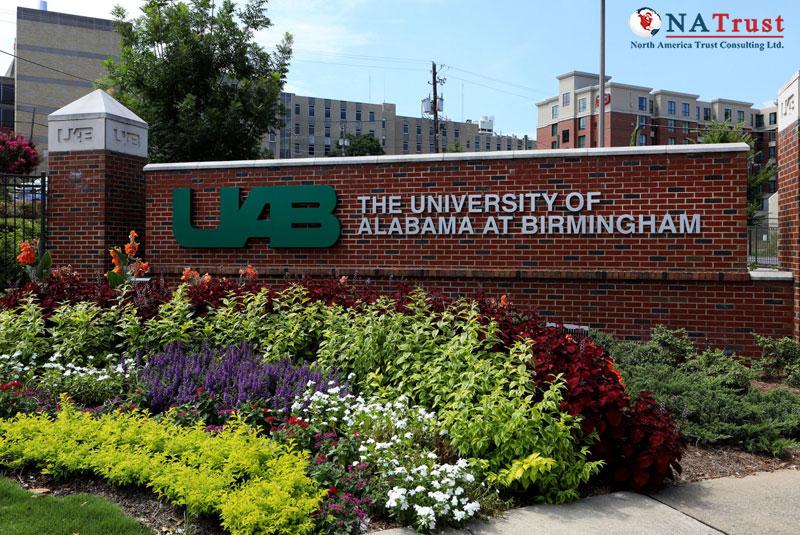 Du học ngành y tá tại University of Alabama