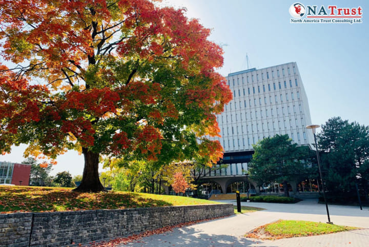 Du Học University Of Waterloo - Đại Học Thuộc Top 10 Canada