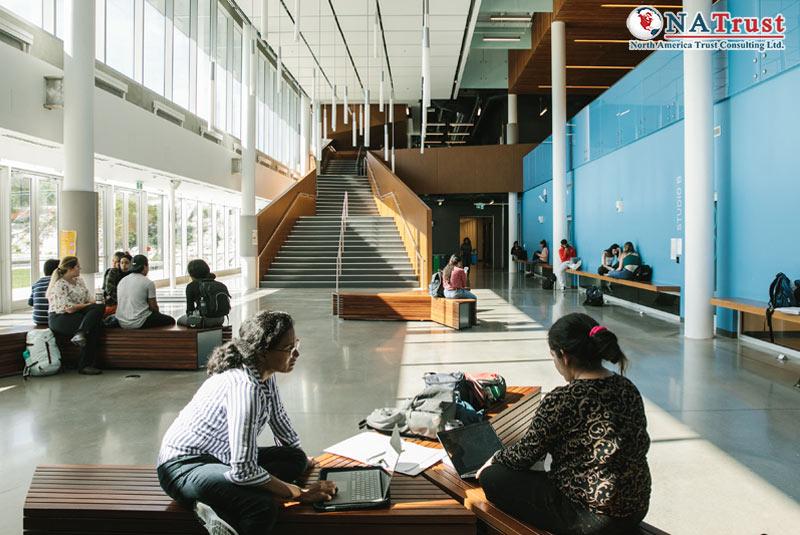 Du Học York University - Đại Học Top Thế Giới