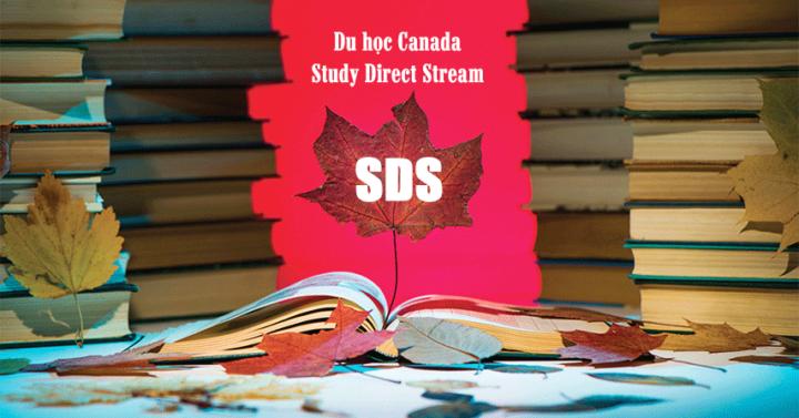 Visa SDS và Visa thường
