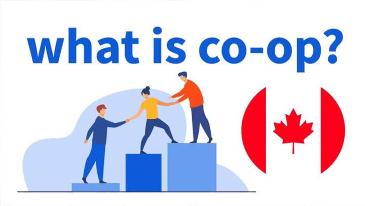 chương trình Co-op tại Canada
